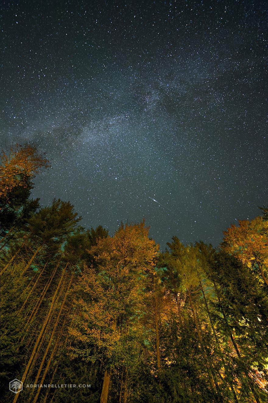 Fall Under Stars by Adrian Pelletier
