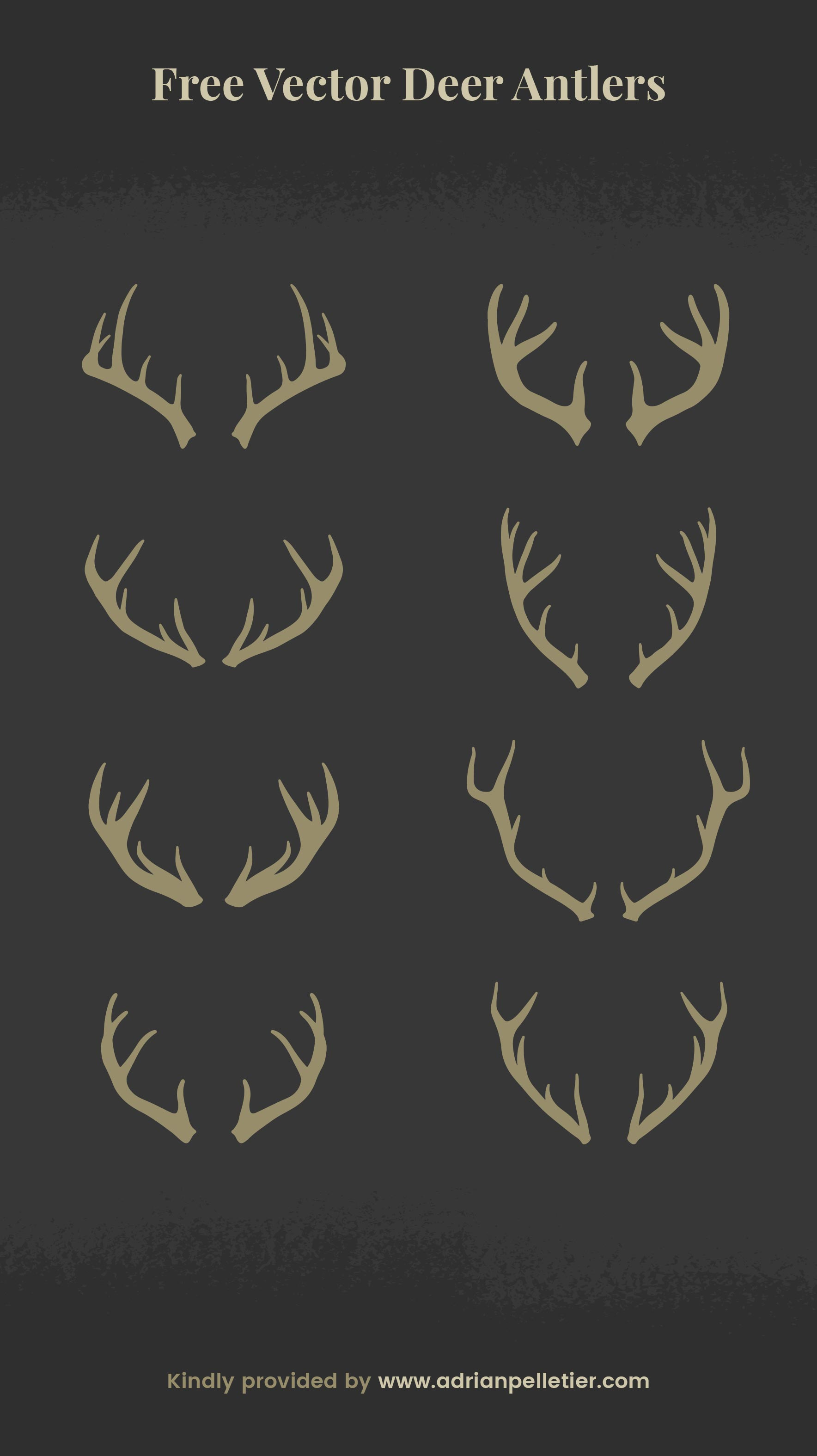 Free vector deer antlers by Adrian Pelletier